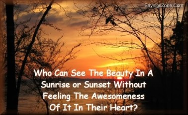 who-can-see-the-beauty-in-a-sunrise-or-sunset-without-feeling-the-awesomeness-of-it-in-their-heart-nature-quote
